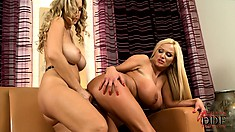 Big tit Sharon and Carol lick some slit and use a strapon to fuck