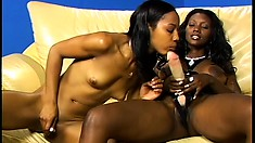 Bending over, she has the stacked black babe drilling her snatch with a strap-on dildo