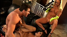 Pussy-hungry guy takes turns drilling two wild babes' firm butts