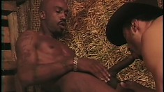 Horny cowboy sucks a big black stick and receives it deep in his hungry ass