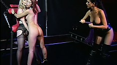Nina Hartley and Sarah Blake tie up and tease Natasha Sweet in the lesbian dungeon