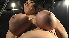 Chubby brunette gets her massive titties tortured by her mistress