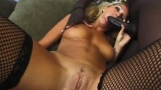 Tiny blonde in fishnets screams as this black snake penetrates her
