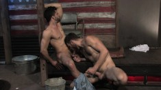 Two hung stallions exchange oral pleasures and enjoy exciting anal sex