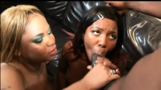 Curvy caramel girls have their lips and hands pleasing a black prick