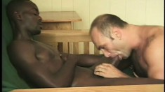Gay ebony slut sucks dick and gets his ass pounded by white dick