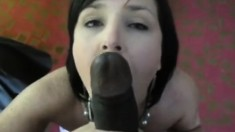 Interracial Big Cock Adventures with Busty Hoes